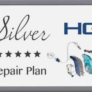 HG Silver Repair Plan
