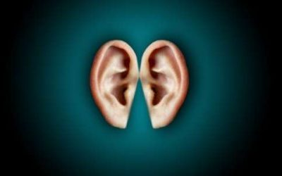 Interesting Facts About Hearing